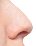 Human nose Royalty Free Stock Images