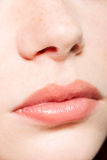 Human nose and lips. Close up Stock Photography