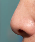 Human nose Royalty Free Stock Photo