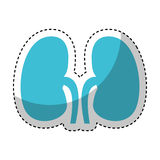 Human organ kidneys icon. Vector illustration design Stock Images