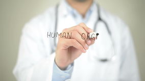 Human Organ For Transplant , Doctor writing on transparent screen stock video