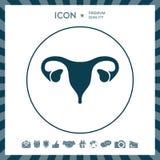 Human organs. Female uterus icon. Human organs. Female uterus silhouette symbol Royalty Free Stock Photo