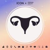 Human organs. Female uterus icon. Human organs. Female uterus silhouette symbol Royalty Free Stock Images