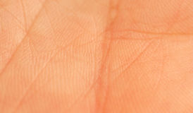 Human palm macro Stock Photo