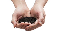 Human palm to the ground Royalty Free Stock Images