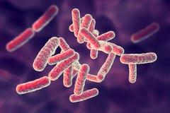 Human pathogenic bacteria. On colorful background, 3D illustration Stock Photo