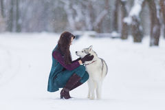 Human and Pet Relationships. Caucasian Brunette Woman Playing with Husky Dog Outdoors in Park Area Stock Photography