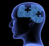 Human profile and brain in the form of the puzzle Stock Photo
