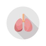 Human& x27; pulmões saudáveis de s Ícone com sombras longas no projeto liso moderno Fotos de Stock