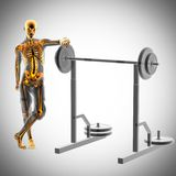 Human radiography in gym room Royalty Free Stock Photos