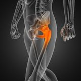 Human radiography scan. Made in 3D Stock Photo