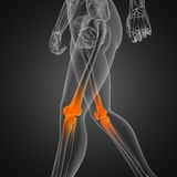 Human radiography scan. Made in 3D Stock Images