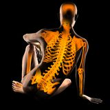 Human radiography scan. On black Royalty Free Stock Photos