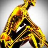 Human radiography scan  with glowing bones Stock Photo