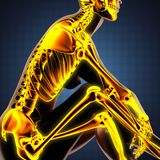 Human radiography scan  with glowing bones Royalty Free Stock Images