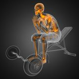 Human radiography scan in gym room Stock Photos