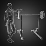 Human radiography scan in gym room. Made in 3D Stock Photography
