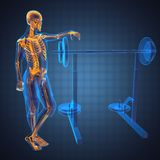 Human radiography scan in gym room. Made in 3D Royalty Free Stock Images
