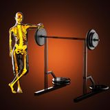 Human radiography scan in gym room Royalty Free Stock Photography