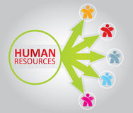 Human resource concept Royalty Free Stock Images