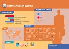 Human resource vector infographic Stock Image