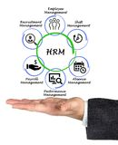 Human resource management. Man presenting Human resource management Royalty Free Stock Images
