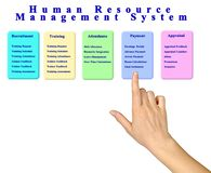 Human Resource Management System stock photography