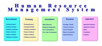 Human Resource Management System royalty free stock photo