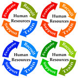 Human resources. Different stages of a human resources (HR) department Stock Photo