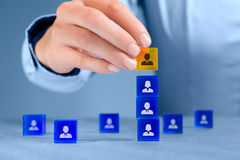 Human resources and CEO. Human resources officer install one person as team leader. Team composition, team configuration, teamwork, cooperation and team leader ( royalty free stock image