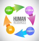 Human resources color cycle illustration Royalty Free Stock Photos