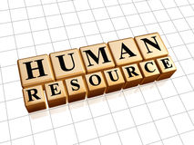 Human resources in golden cubes Royalty Free Stock Images