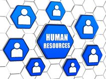 Human resources and person signs in blue hexagons Royalty Free Stock Photography