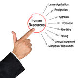 Human Resources. Presenting diagram of Human Resources Stock Photos
