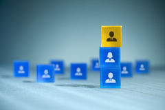 Human resources team Stock Images