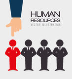 Human resources, vector illustration. Royalty Free Stock Image