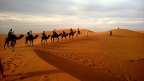 Human Riding Camel on Dessert Under White Sky during Daytime Stock Photos