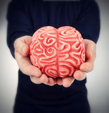 Human rubber brain between the hands Stock Images