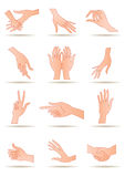 Human's hands. In different positions -  illustration Royalty Free Stock Photography