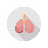 Human's Healthy Lungs . Icon with long shadows in modern flat design. Healthy Lungs. Icon with long shadows in modern flat design royalty free illustration