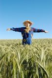 Human scarecrow Stock Photo