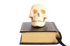Human Scull On Book Stock Image