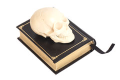Human Scull On Book Stock Images
