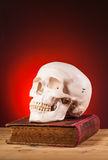 Human scull and old book Royalty Free Stock Image