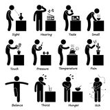 Human Senses Icons. A set of human pictogram representing all the important senses of a human. This includes sight, hearing, tasting, smelling, touching
