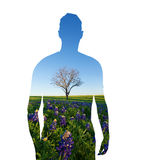 Human shape and nature, protecting environment, bluebonnet field Stock Image