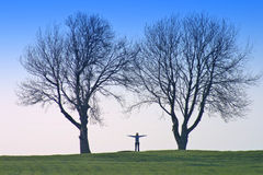 Human shape and trees. Woman shape outside Stock Images