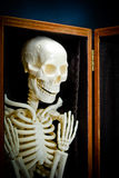 Human skeleton. Bone-white human skeleton in closet. Suitable for spooky Holloween concepts royalty free stock images