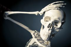 Human skeleton body, forget concept. Medical skeleton model with dramatic light Stock Image