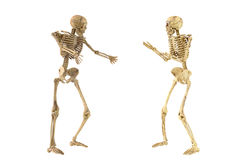 Human skeleton bone standing action Stock Photo